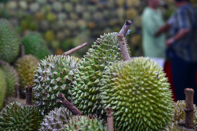Durian at the Build Factory Market