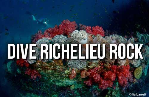 Dive Richelieu Rock Image