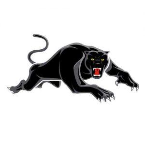 Panthers vs Dragons @ Happy Snapper Khao Lak