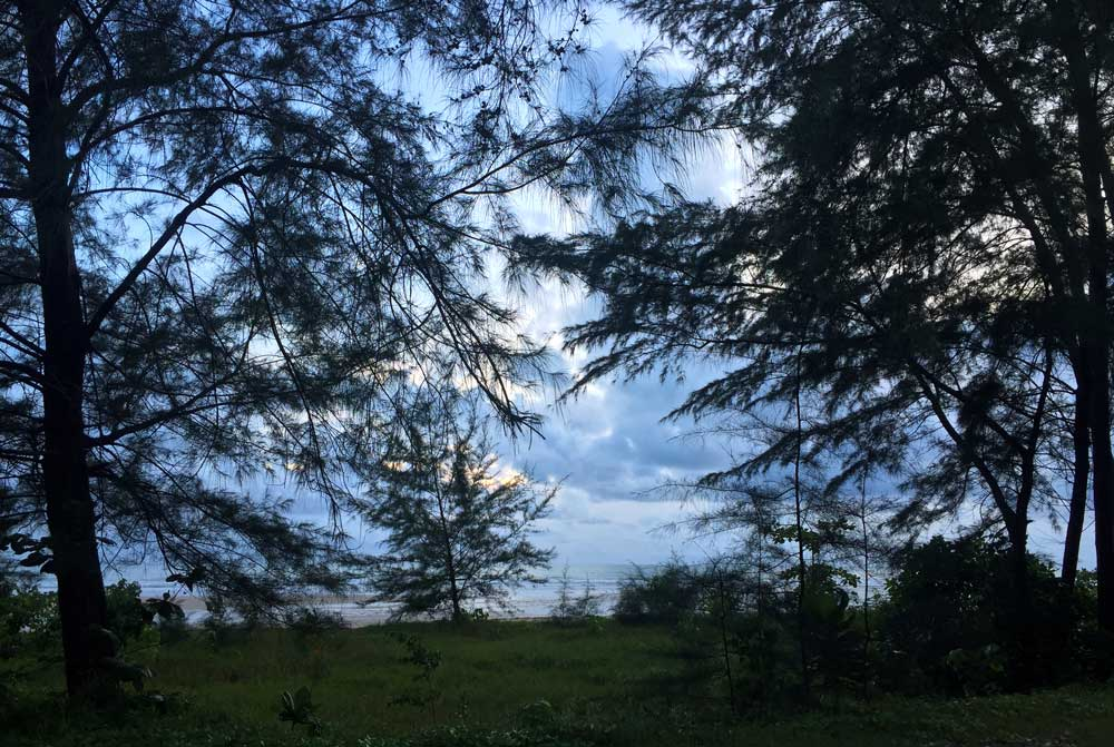 Clouds and Andaman Sea viewed through trees